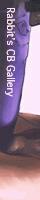 I-Rabi Homepage / I-Rabiさん